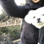 愛犬エマとの伊豆旅行!!ゆれる吊り橋と崖の伊豆城ヶ崎海岸で愛犬エマとビビる